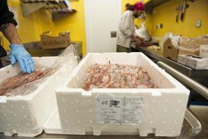 peix fresc de Vilanova